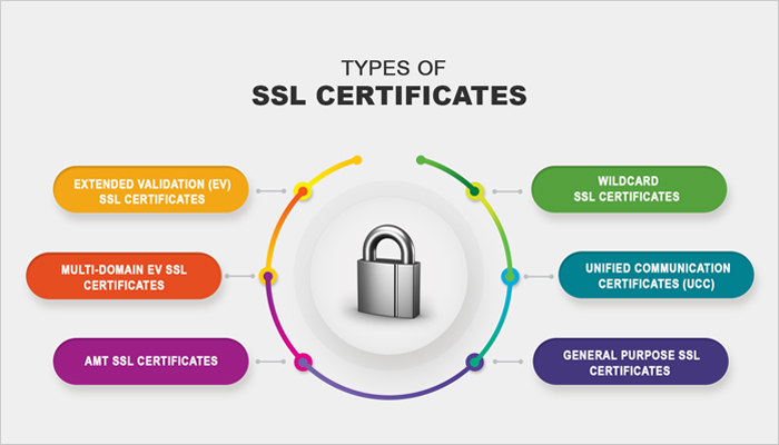 ssl nexiner.it jnstore.it
